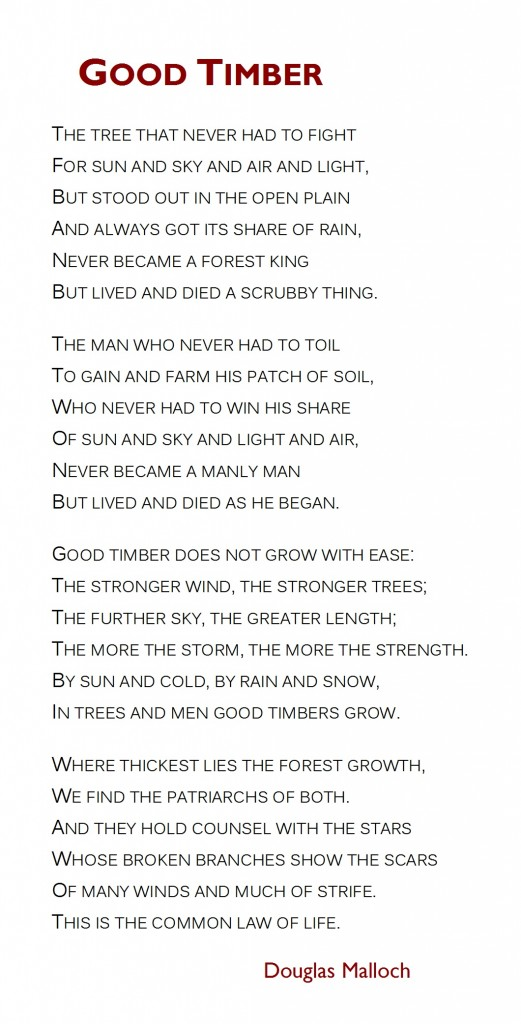 Good-timber-poem-521x1024